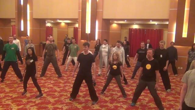 Curso Chi Kung Órbita Microcósmica 4 - Sifu Wong Kiew Kit
