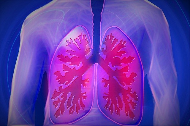 Chi Kung para los pulmones
